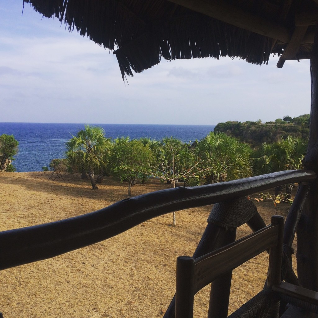 View from the Pachikonjo Beach Resort